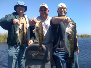 Trophy Fishing on Lake Okeechobee