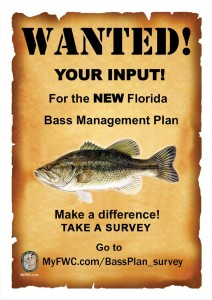 bass_management_plan