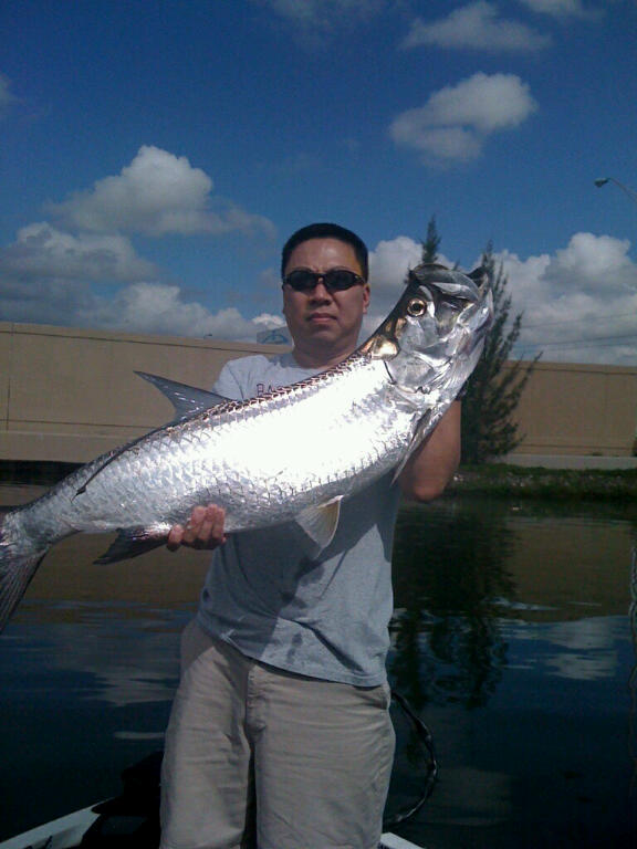 tom lee-Tarpon.