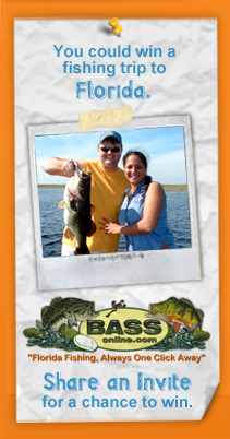 visit.florida.little.sunshine.banner BASSONLINE