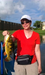 Florida Peacock bass Fishing 888-629-2277