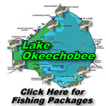 Lake Okeechobee Fishing Trip Packages