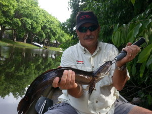 Terry Turner WNZF Snakehead