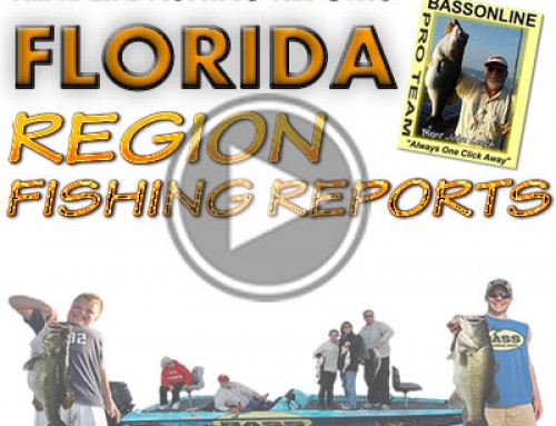 June 2014 North Florida Fishing Report by Steve Neimoeller