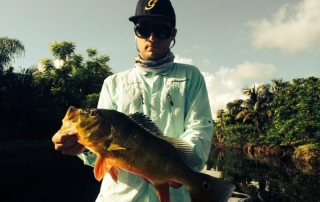 Sammy Destroyed by Florida Peacock Bass