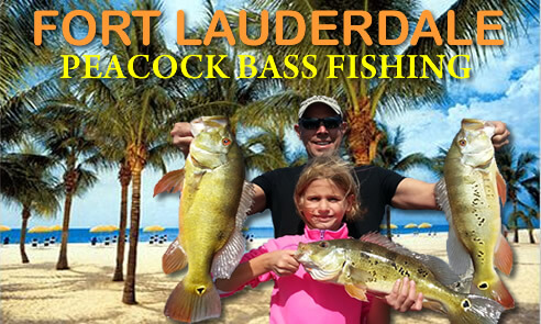 Ft Lauderdale peacock bass fishing