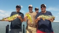 Peacock Bass Group Trip