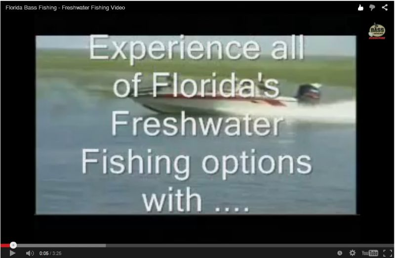 Florida Süßwasserfischen Video