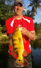 Peacock Bass Miami Fishing