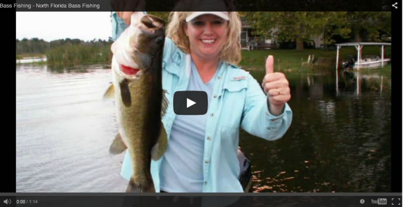 Video Ocala bass Fishing