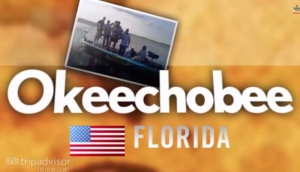 Video Okeechobee Fishing