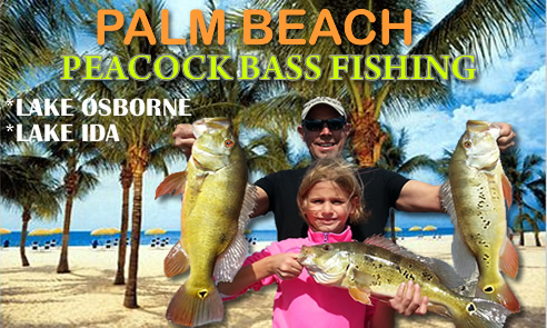 Palm Beach Peacock bass fishing