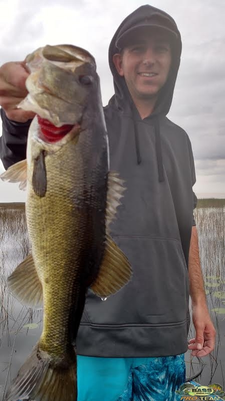 Okeechobee fresh water Bass fishing charters