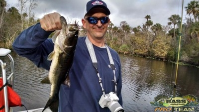 St Johns River Pictures 2014
