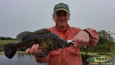 Everglades Bass fishing Charters