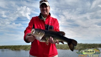 Lake Okeechobee Largemouth Bass Fishing Charters