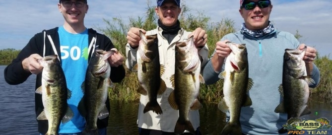 Okeechobee Largemouth Bass Fishing Guide Capt Dave Lauer