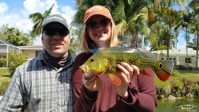 Florida Peacock Bass Fishing Guide Capt Robert Miley