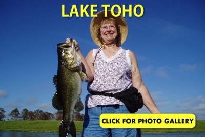 Lake Toho Gallery