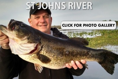 St Johns River Gallery