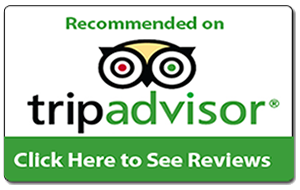 Fishing Trip Reviews