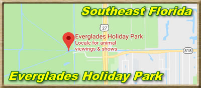 Everglades Holiday Park - Ft Lauderdale