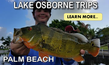 Lake Osborne Palm Beach Bass Fishing Trips